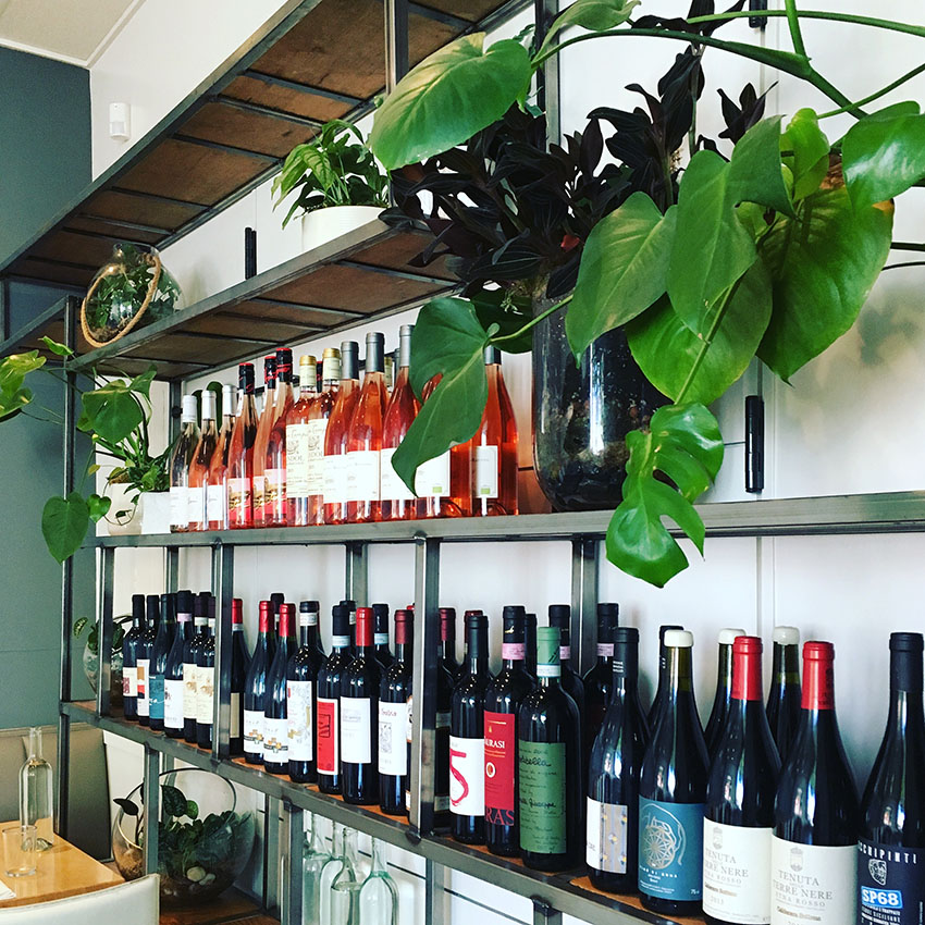 wine wall with plants