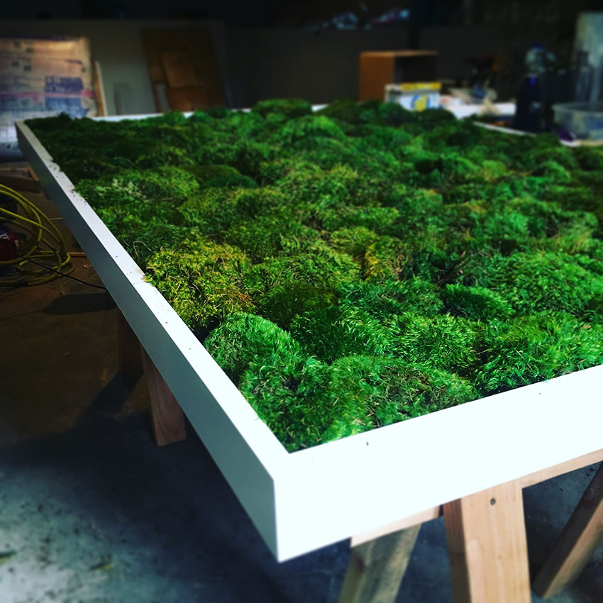moss wall in the studio